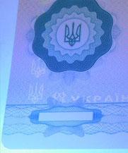 Диплом - свечение УФ (Покровск (Красноармейск))